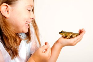 caring for your pet frog