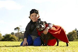Child Dog Safety