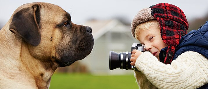 8 tips for taking the perfect photo of your pet love that pet